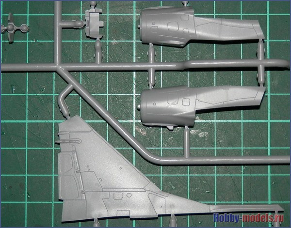 sp-3-1_tail-nose